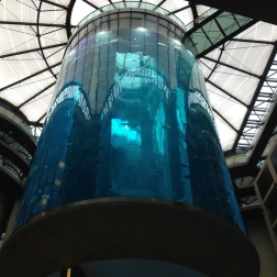 Berlin - Raddison Blu